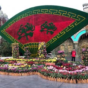 济南方特游乐园2019大型菊花展